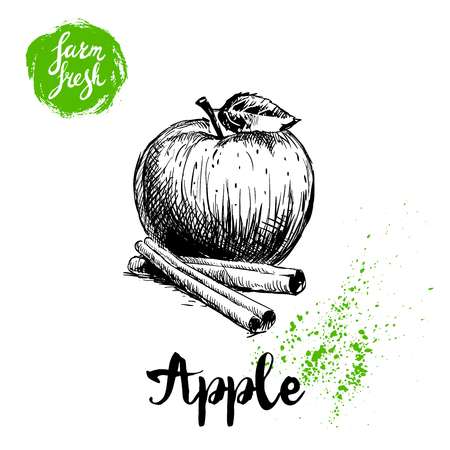 Hand drawn sketch apple with leaf and cinnamon sticks poster. Vitamin and healthy farm fresh fruit vector illustration isolated on white background.