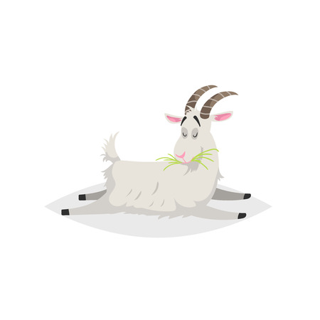 Cute funny goat. Cartoon flat style trendy design farm domestic animal. Lies and chews fresh grass. Vector illustration isolated on white background. Illustration