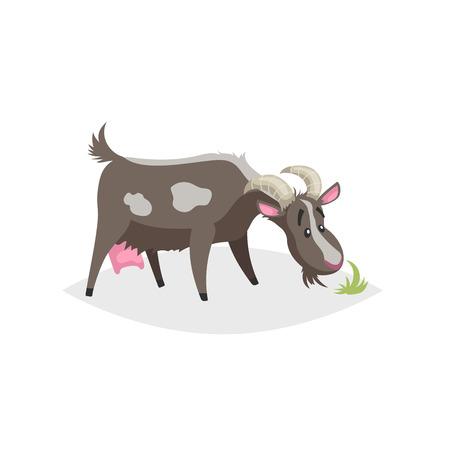 Cute funny goat. Cartoon flat style trendy design farm domestic animal. Spotty black goat stand and looking to green grass. Vector illustration isolated on white background.