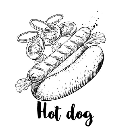 Hot dog with flying ingredients. Hand drawn sketch style fast food illustration. Best for menu designs. Grilled sausage, lettuce leaves, tomato and onion slices. Retro design.