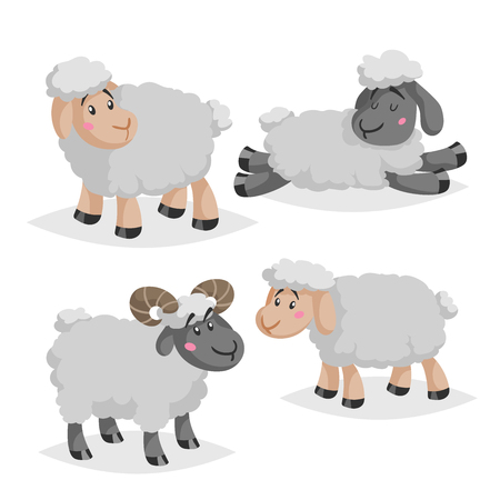 Cute sheeps and rams in various poses. Cartoon style farm animals.  Slleeping and standing animals. Best for kid education. Vector illustration isolated on white background.