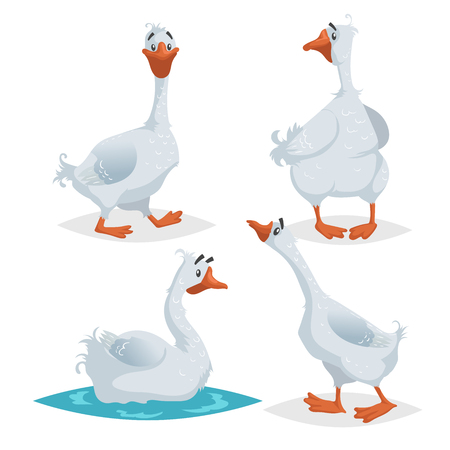 Cute geese in different poses. Cartoon flat style farm animals  birds collection. Walking, standing, swimming goose. Vector illustration isolated on white background. Illustration