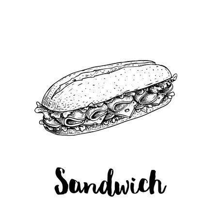 Long chiabatta sandwich with ham slices, cheese, tomatoes and lettuce leaves. Hand drawn sketch style. Fast food drawing for restaurant menus, street food packages. Vector illustration.  イラスト・ベクター素材