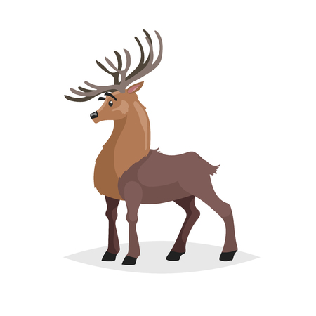 Cute deer. Cartoon comic style forest animal character. Reindeer male mascot. Zoo and wild animal vector illustration. 向量圖像