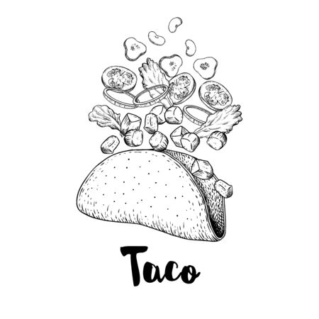 Hand drawn taco. Sketch style illustration of constructor taco. Flying isolate ingredients. Meat pieces, onion rings, tomato, cucumber, beans, tortilla. Best for restaurant menu. Fast food. Vector drawing.