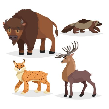 North America wild animals set. Collection of forest animals. Bison, deer, lynx, wolverine. Vector illustrations in comic style, Isolated on white background. 向量圖像