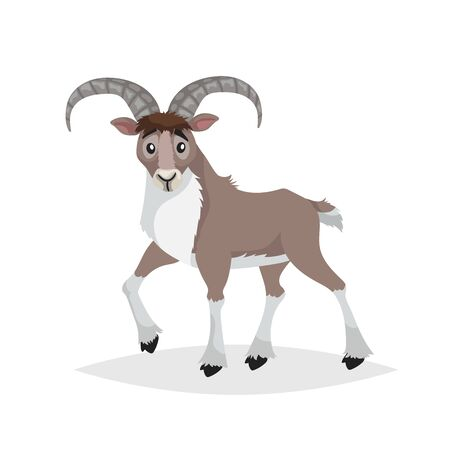 Cute cartoon bighorn ship. Mountain animals. Urial in comic style. Wild animal. Vector drawing for kids. Isolated on white background.