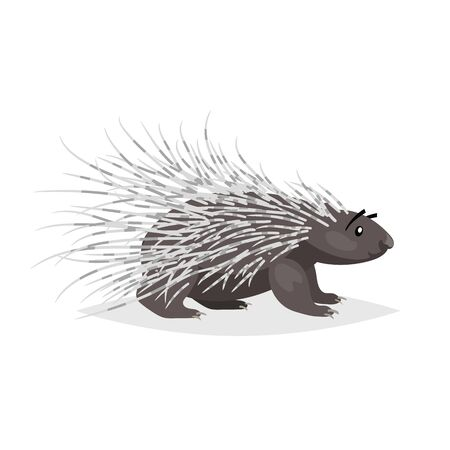 Cute cartoon porcupine. North America wild animal. Vector drawing for kid and child books. Isolated on white background. Ilustração