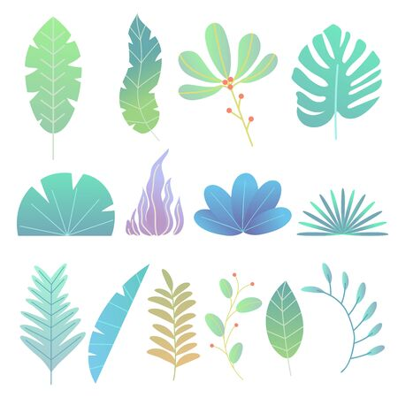 Abstract trendy style plants, leaves and twigs. Flat simple style. Colorful trees and bushes, tropical flowers. Vector illustration for creative design.  イラスト・ベクター素材