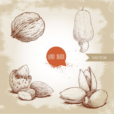 Hand drawn sketch style nuts set. Walnut, cashew fruit, almonds and pistachios. Collection of healthy natural food. Vector illustrations isolated on old background.