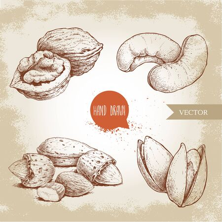 Hand drawn sketch style nuts set. Walnut, cashew, almonds and pistachios. Collection of healthy natural food. Vector illustrations isolated on old background.