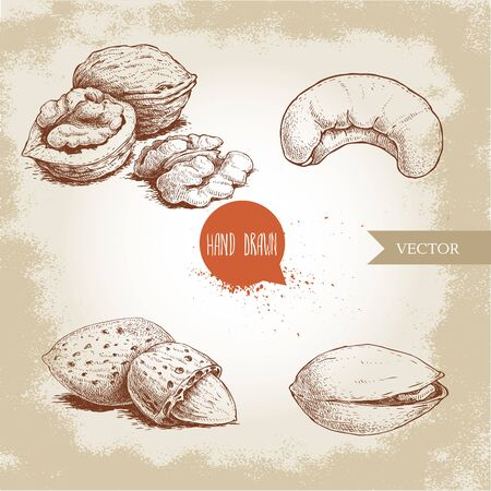 Hand drawn sketch style nuts set. Walnut, cashew, almond and pistachios. Collection of healthy natural food. Vector illustrations isolated on old background.