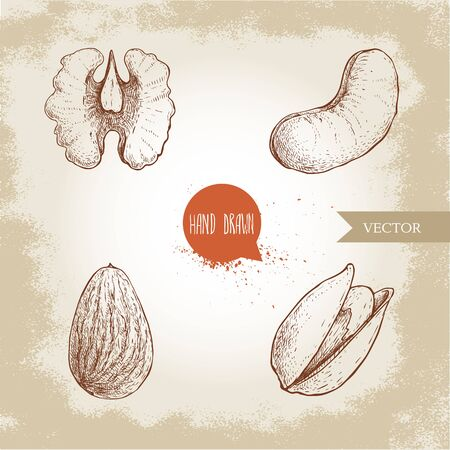 Hand drawn sketch style nuts set. Walnut, cashew, almond and pistachio seeds. Collection of healthy natural food. Vector illustrations isolated on old background.