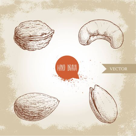 Hand drawn sketch style nuts set. Walnut, cashew, almond and pistachio. Collection of healthy natural food. Vector illustrations isolated on old background.  イラスト・ベクター素材