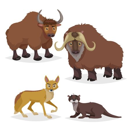 Cute cartoon North America and Europe animals set. Muskox, yak, otter and coyote. Vector drawings for kids. Isolated on white background.