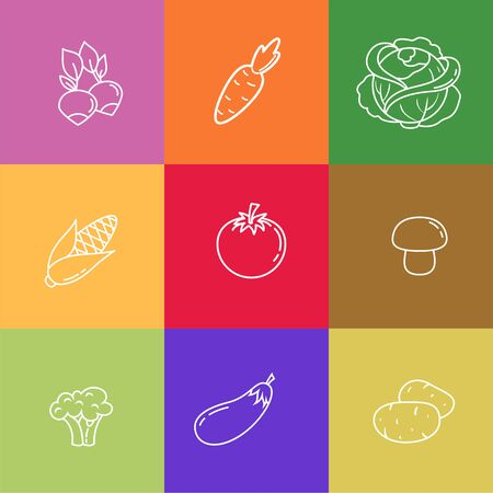Different vegetables thin line icons on colorful squares set. Radish, carrot, cabbage, corn, tomato, mushroom, broccoli, eggplant, potatoes. Outline vegan and eco food vector illustrations.