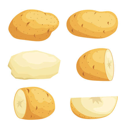 Potatoes in flat cartoon style set. Whole, cut, peeled and sliced potato. Vector illustrations isolated on white background.