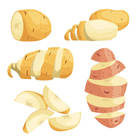 Potatoes in flat cartoon style set. Whole, cut, peeled and sliced potatoes, potatoes with peel. Vector illustrations isolated on white background.