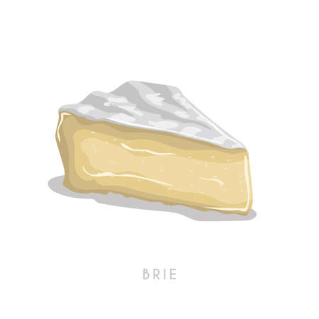 Piece of brie cheese. Cartoon flat style cheese segment. Fresh dairy product. Vector illustration single icon isolated on white background.