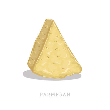 Piece of parmesan cheese. Hard granular aged cheese segment. Cartoon flat style. Vector illustration isolated on white background.