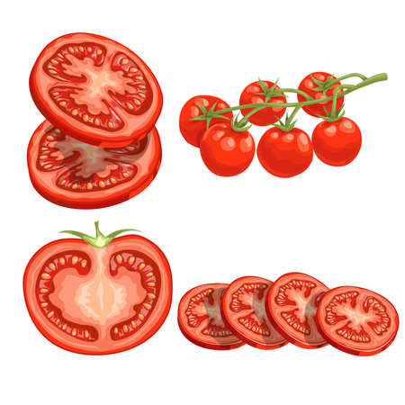 Cartoon different types tomatoes set. Red ripe vegetables isolated on white background. Slices, half tomato and cherry tomatoes on branch. Vector illustrations. Stock Illustratie