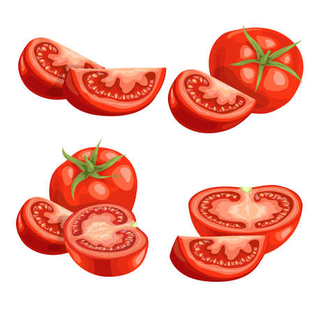 Cartoon different types tomatoes set. Red ripe vegetables isolated on white background. Slices, tomato compositions and tomato quarter segments. Vector illustrations. Stock Illustratie