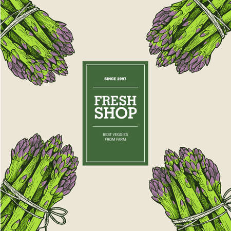 Fresh shop and market template. Poster with colored hand drawn asparagus bunches. Sketch style vector illustrations.