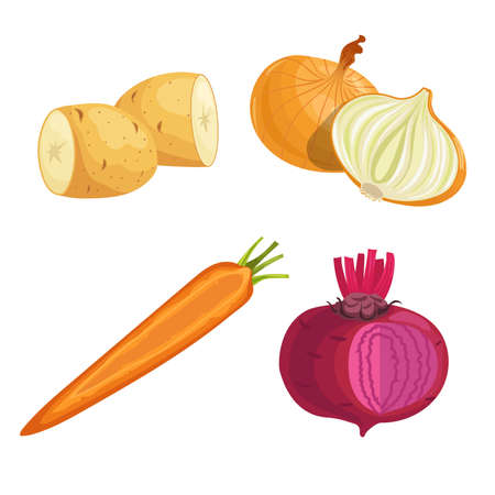 Set of root vegetables. Potato, onion, carrot groups and beet with greens. Cartoon simple design vector illustrations. Fresh farm veggies isolated on white background.