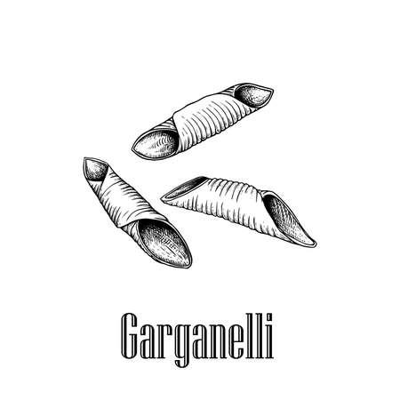 Italian pasta Garganelli. Home made pasta. Hand drawn sketch style illustration of traditional italian food. Best for menu designs and packaging. Vector drawing isolated on white background.