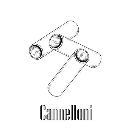 Italian pasta Cannelloni. Hand drawn sketch style illustration of traditional italian food. Best for menu designs and packaging. Vector drawing isolated on white background.