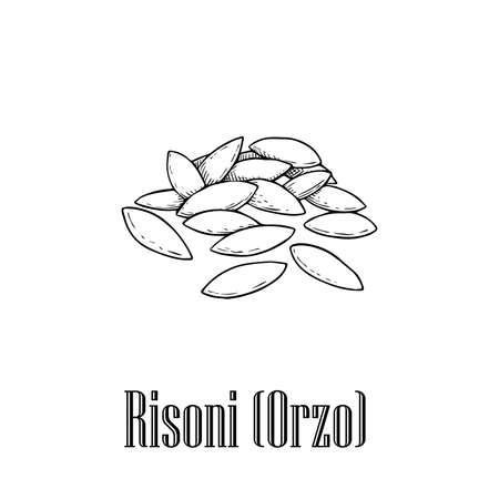 Italian pasta Risoni. Hand drawn sketch style illustration of traditional italian food. Best for menu designs and packaging. Vector drawing isolated on white background. 向量圖像