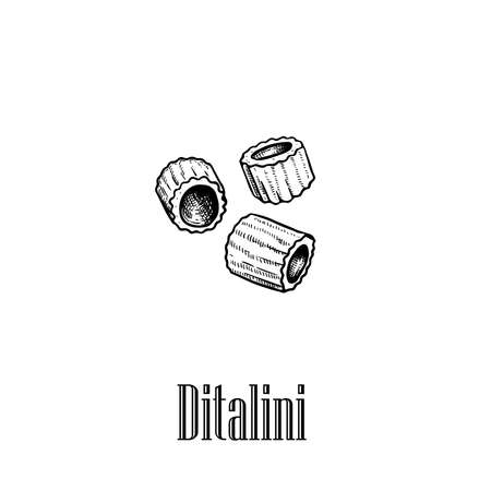 Italian pasta Ditalini. Hand drawn sketch style illustration of traditional italian food. Best for menu designs and packaging. Vector drawing isolated on white background.