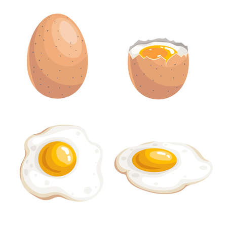Cartoon flat design eggs set. Whole, boiled egg and fried eggs. Fresh farm products. Breakfast symbol. Isolated on white background. Vector Illustratie