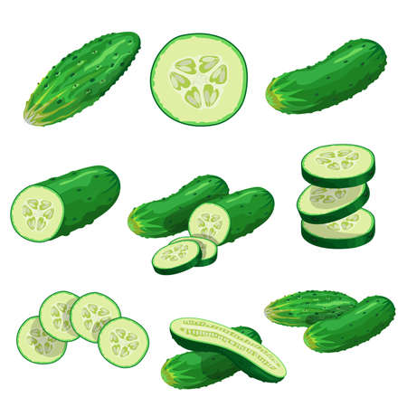 Cartoon cucumbers set. Whole cucumbers, half, flying slices and cucumbers group. Fresh farm vegetables collection. Vector illustrations isolated on white background.