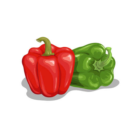 Fresh bell peppers set. Cartoon flat style icon. Red and green peppers vector illustration. Vegetable farm fresh product. Best for education or market designs. Isolated on white background.