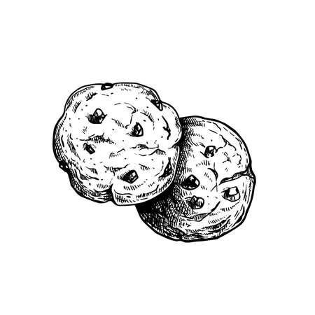 Chocolate chip cookies. Top view. Hand drawn sketch style. Fresh baked. American biscuit. Vector illustration isolated on white background. Иллюстрация