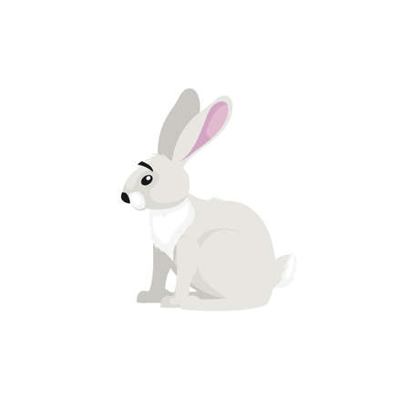 Arctic white hare. Cartoon flat style illustration of polar and arctic animal. Vector illustration for kids, education. Isolated on white background.
