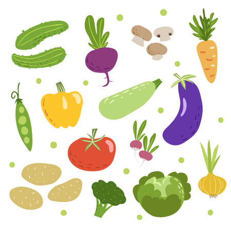 Doodle vegetables set. Cucumbers, beet, mushrooms, carrot, green pea, pepper, zucchini, eggplant, tomato, radish, potatoes, broccoli, cabbage and onion. Sketchy veggies collection. Vector Scandinavian style drawings. Ilustração