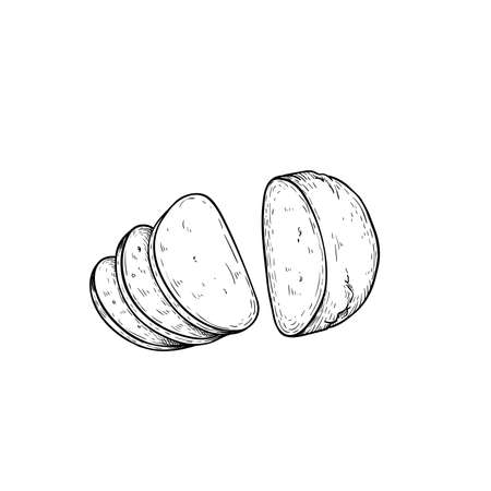 Mozzarella cheese sliced. Top view. Hand drawn sketch style drawing of traditional Italian cheese made from buffalo milk. Fresh soft butter cheese. Vector illustration. 向量圖像