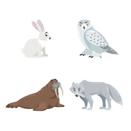 Arctic animals set. Polar hare, snow owl, walrus and polar wolf. Cartoon flat design. Vector illustrations isolated on white background.