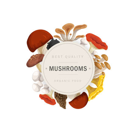 Cartoon mushrooms wreath design template. Porcini, oyster mushrooms, shiitake, enotake, truffle, chanterelle, champignon and other. Ideal for recipe, menu, label, icon, packaging. Healthy forest food vector illustrations.