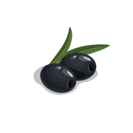 Black pitted olives with leaves in cartoon style. Flat simple design element for packaging, logos and other olive products. Vector illustration isolated on white.