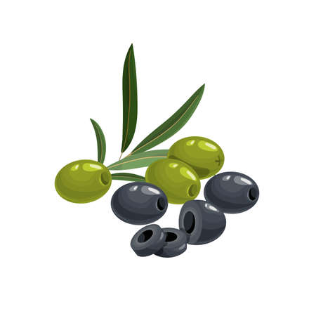 Black and green pitted olives with cuts and leaves in cartoon style. Flat simple design element for packaging, logos and other olive products. Vector illustration isolated on white.