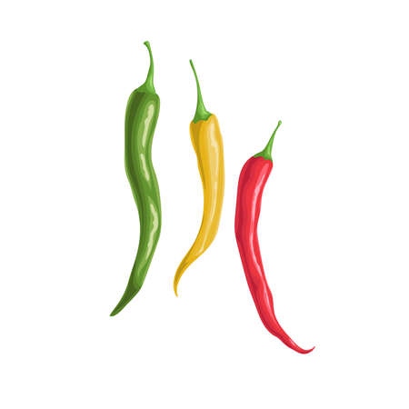 Hot different color chili peppers. Hot burning vegetable. Flat cartoon design style. Group cayenne peppers vector illustration isolated on white background. Иллюстрация