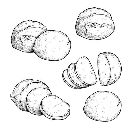 Hand drawn sketch style mozzarella cheese set. Traditional Italian soft cheese. Single, in group, whole and sliced, top view. Vector illustrations isolated on white background. Иллюстрация