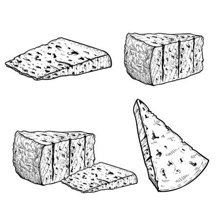 Italian cheese Gorgonzola set. Hand drawn sketch style drawings. Traditional Italian blue cheese collection. Vector illustrations isolated on white background.