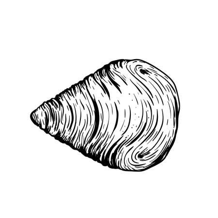 Traditional Italian dessert Sfogliatelle (Sfogliatella). Top view. Hand drawn sketch style Italian sweets illustration. Puff pastry and custard. Best for packaging and menu designs. Stock Illustratie