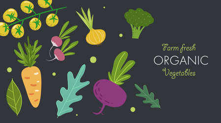 Creative banner with fresh vegetables. Trendy flat doodle template. Tomatoes, onion, beet, carrot, broccoli and greens. Farm fresh organic veggies on dark background. Vector illustration.