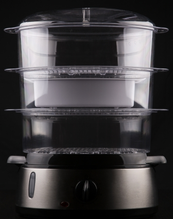 food steamer photo