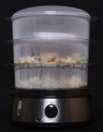 food steamer photo